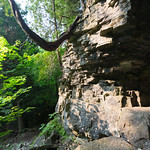 Limestone, Bruce's Cave