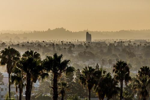 california film sunrise canon losangeles storage palmtree 5dmark3 ironmountainfilm