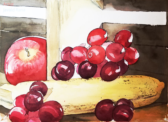 Watercolour line and Wash fruit still life