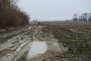 Pushing through Hungarian mud 2 | by najuste