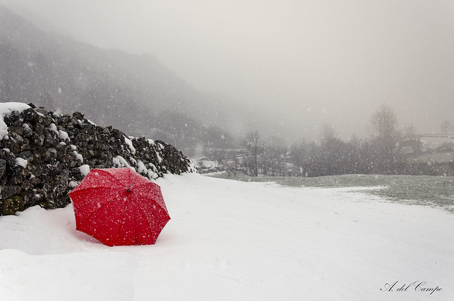 Paraguas Rojo (12/53)