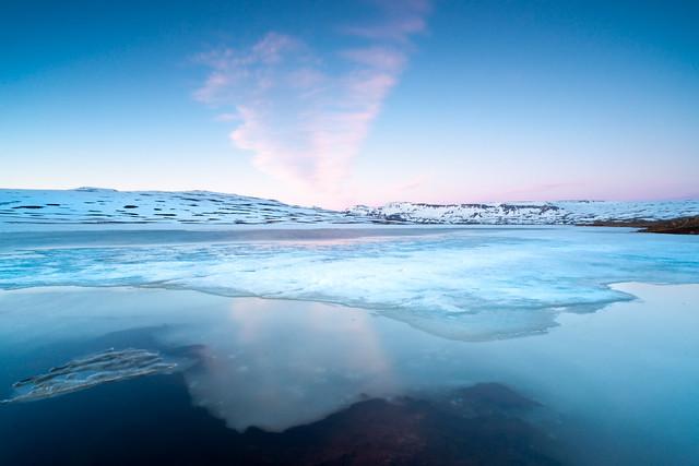 blue nordic