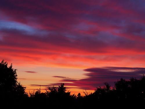 sunset vancouverwa beautifulsunset beautifulweather sunsetcolors colorfulsunset silhouetteoftrees silhouetteinthesunset vancouverwasunset sunsetinvancouverwa