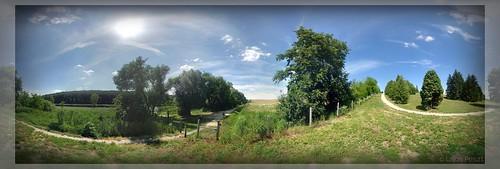 park tó nyár somogy deseda napsütés arborétum gyalogút