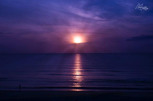 DAYTONA BEACH Summer Morning