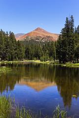 Mount Dana, Yosemite National Park