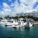 #6330 dive boat harbor