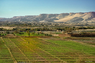 Agriculture Valley in Egypt Desert Oasis | by Sierragoddess