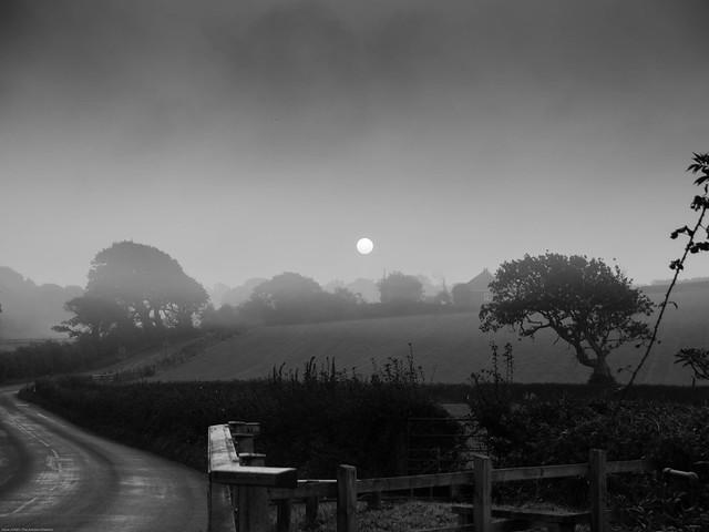 2014 09SEP04-05 CHILLERTON - EARLY MORNING MIST IN HIGHWOOD LANE