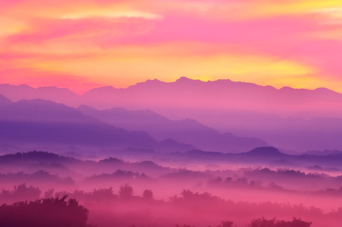 d90 風景 sigmaapo70300mmf456dgmacro 二寮 taiwan tainan 畫意攝影 salonphotography landscape 逆光 backlight