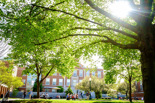 Students on campus in the spring
