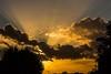 South London sunset. by Owen Llewellyn