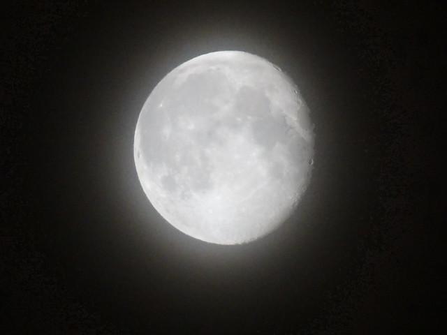 Ich wollte den Mond um Vergebung bitten, dein liebes helles Angesicht, für das, was du um mich gelitten, und du bist da oben, ich kann es nicht, lege ich unter den verlassenen Stern und bitte, daß sich Gott erbarme, um deiner Liebe willen, mein ich dich die andre Welt empfangen, verzeihe meinem Lebenswahn, wer hat genug getan 0014