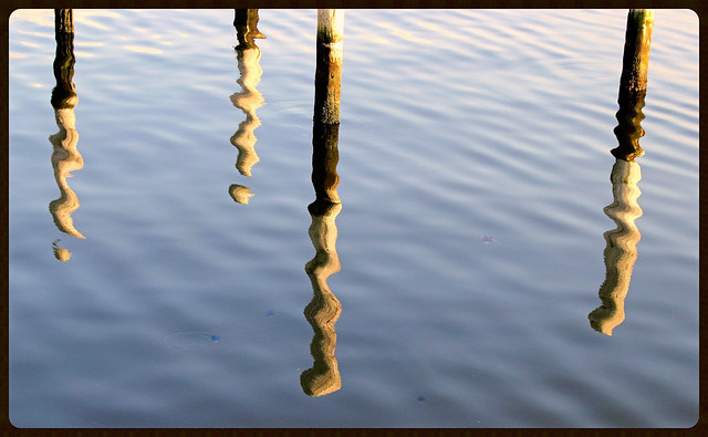 reflection of the poles