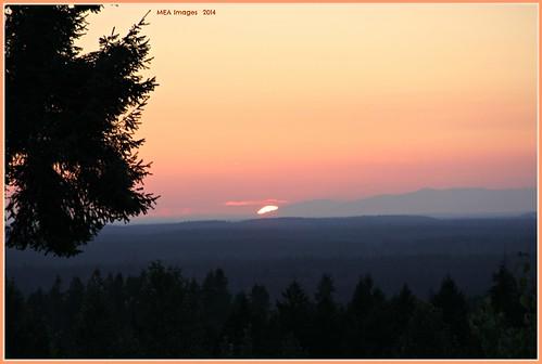 trees sunset canon washington colorful dusk rollinghills picmonkey:app=editor