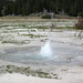 Twig Geyser (Fountain Group, Lower Geyser Basin, Yellowstone Hotspot Volcano, nw Wyoming, USA)