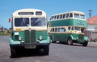 John J Hills Wollongong AEC Regal III 6351 (ex MTT Adelaide 172) and Leyland OPD1-1 6314 (ex DRT&T 1835) outside the depot in Glebe Street, Wollongong, N.S.W. Australia.