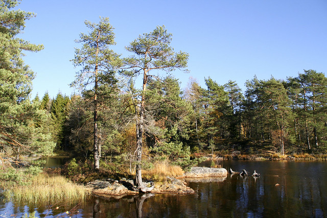 Fjell_Bru 1.9, Østfold, Norway