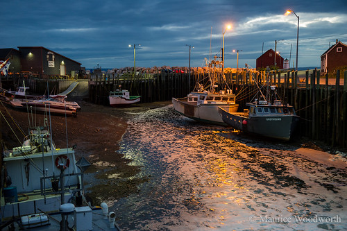 sunset canada boats fishing novascotia ns foam lobster pound sluice hallsharbour capeislander mauricewoodworth