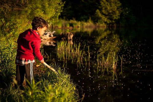 boy sunset pond vermont child killington goldenhour coltonpond