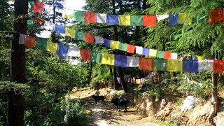 Mcleodganj | by Shrutidshah