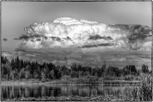 sunset bw weather clouds landscape nikon scenery nik tamron hdr wx snohomishcounty d610 lakestevens lakecassidy silverefex ryderphotographic howardryder tamronsp7002000mmf28divcusd