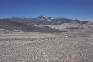White Mountain Peak from dolomite barrens