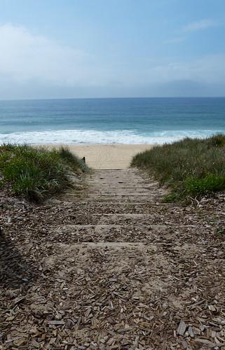 ocean beach views water sand path beachaccess australia nsw