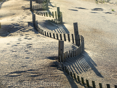 beach sunrise fence sand shadows buried sandy earlymorning longislandny longisland prints barrier davis curve fireisland sanddunes nationalseashore davispark barrierbeach stormfence fireislandbeach davisparkbeach