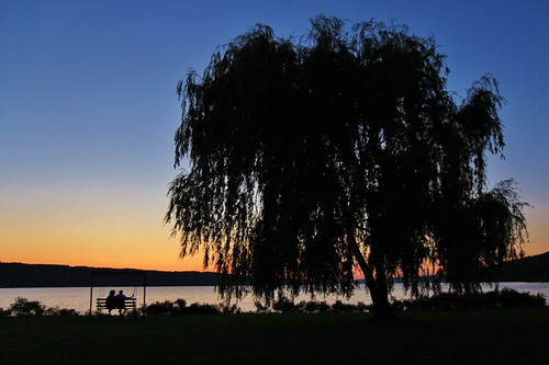 park new york blue sunset summer lake ny tree silhouette june bench chair couple dusk finger watching silhouettes swing willow stewart hour swinging ithaca outline viewing cayuga weeping 2014