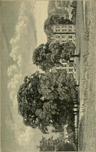 "Image from page 41 of ""The English flower garden and home grounds : design and arrangement shown by existing examples of gardens in Great Britain and Ireland, followed by a description of the plants, shrubs and trees for the open-air garden and their cult 