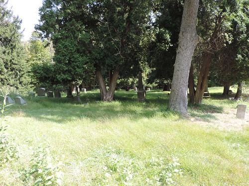 overgrown cemetery nikon pennsylvania p520