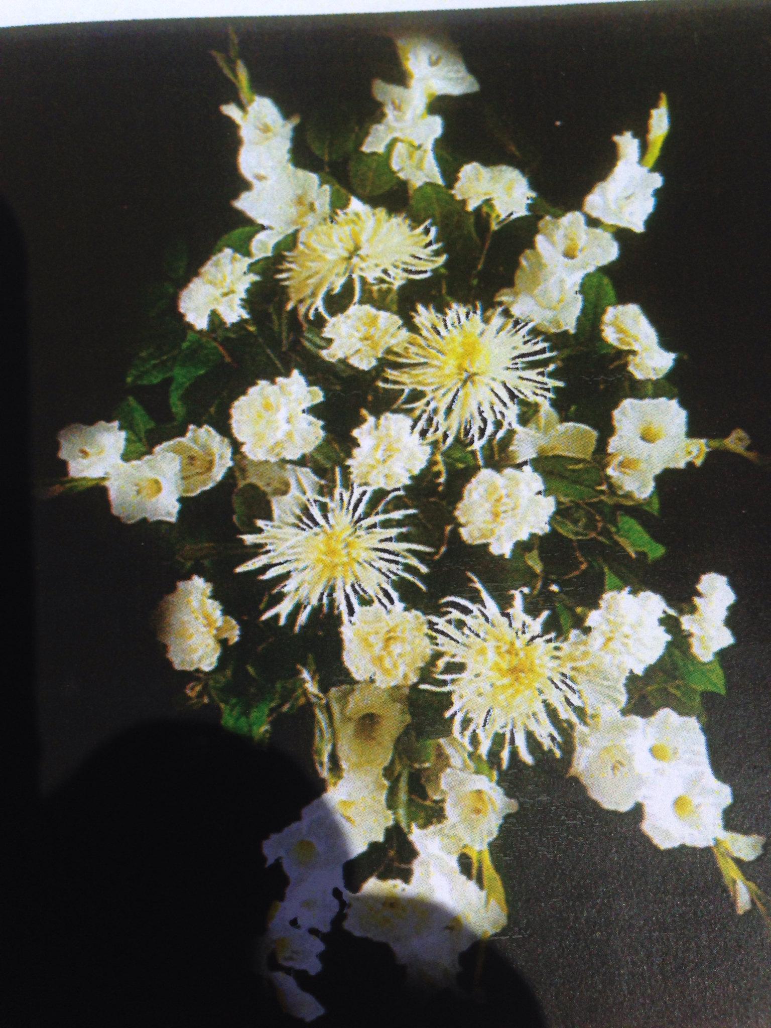 Farah florist. F-sp-4.        $300