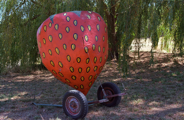 Giant Strawberry (Explore July 2014)