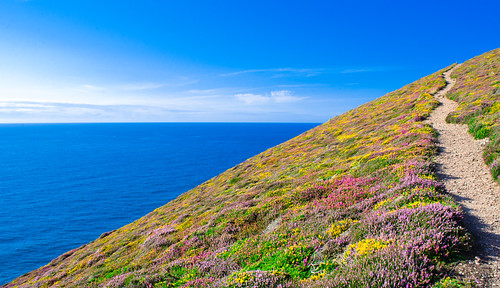 Coast path near Towanroath shaft, St Agnes, Cornwall | by Thomas Tolkien