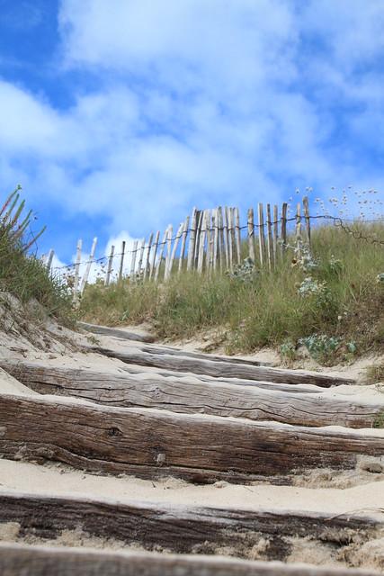 escalier à travers la dune