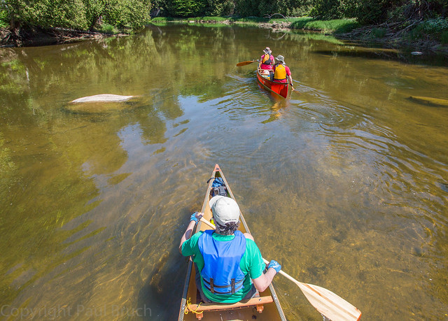 Paddling the Beaver River