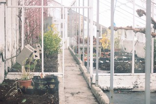 greenhouse | by The Art of Exploring