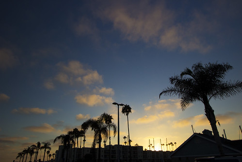 california blue sunset cloud beach beautiful clouds marina canon view palm palmtree swag 1022mm goldenhour