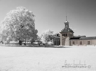 SAM_0439 | by Dan Copeland Photography Hamilton Ontario