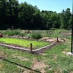 Rockrose City Farm