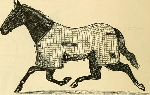 """Image from page 77 of """"Turf goods : fine harness, saddles, trotting and running horse outfits"""" (1892) 