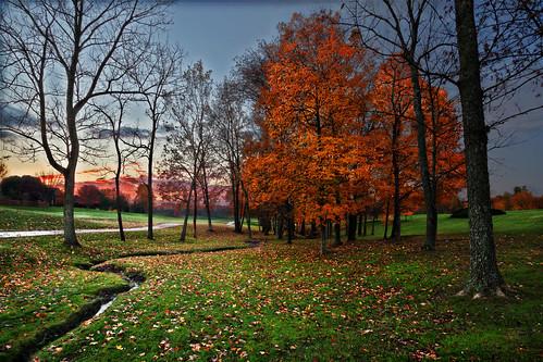 tree sunrise unitedstates kentucky fallcolors union canonef1740mmf4lusm triplecrown canon5dmarkii shannoncayze
