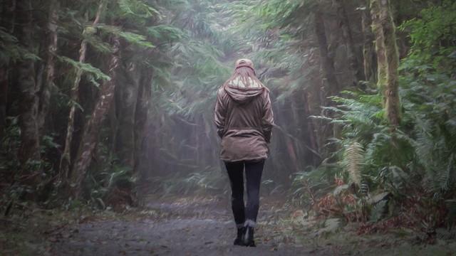 Stroll thru the woods, near Port Renfrew, BC