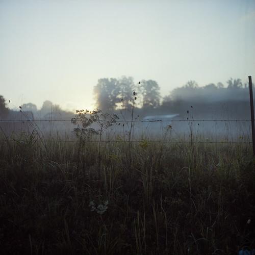 morning plants mist 120 film fog sunrise fence dawn weeds kodak iso400 tennessee september barbedwire portra400nc dayton 2010 colornegative 6x6cm rolleicordiii
