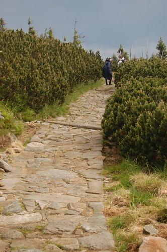 Cesta po hřebeni Krkonoš