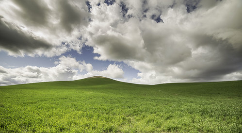 blue sky usa green washington day state cloudy fields naature bunlee bunleephotography