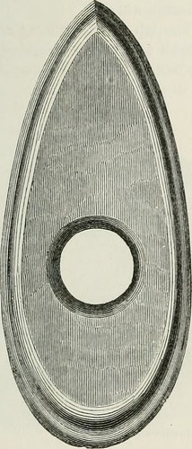 "Image from page 194 of ""The ancient stone implements, weapons, and ornaments, of Great Britain"" (1872) 