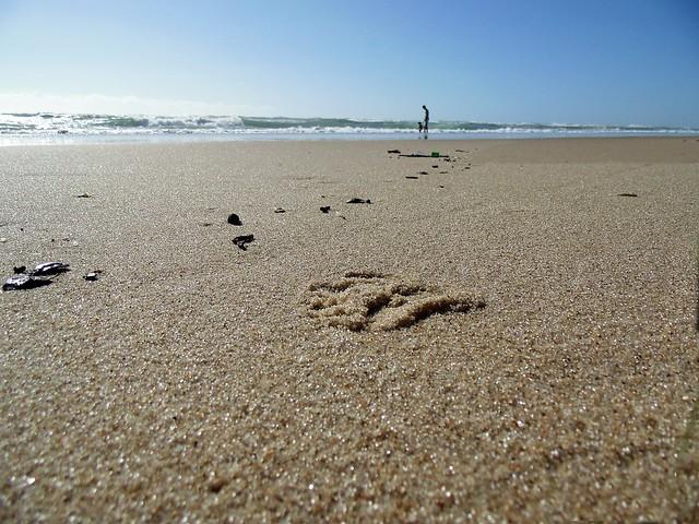 Trail (Praia do Futuro, Fortaleza-CE, Brasil)