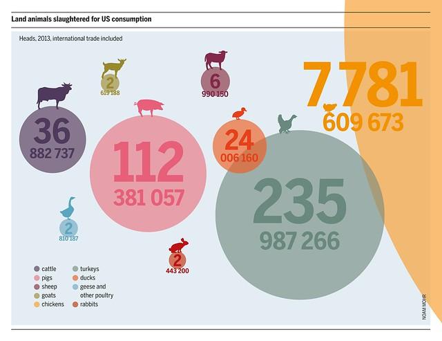 Infografik zur Anzahl der für den Fleischkonsum geschlachteten Tiere in den USA   Mehr Informationen zum Thema finden Sie in unserem Fleischatlas www.boell.de/de/fleischatlas  Urheber/in: Bartz/Stockmar (Lizenz-Infos: www.boell.de/de/2014/01/08/fleischatlas-2014-gafiken-und-...)